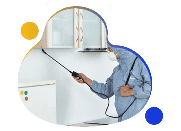 Same Day Pest Control Service